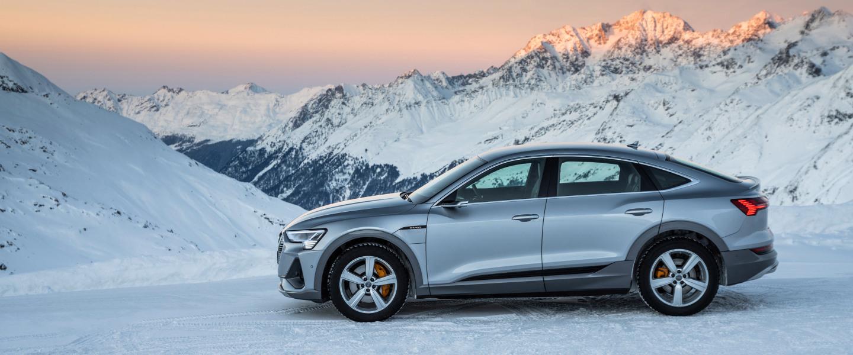 Audi Q familie