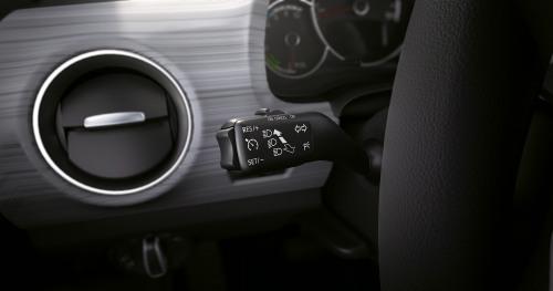 Mii Electric cruise control